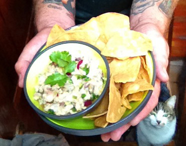 Note: If cats begin to follow you around you'll know you've made something tasty. Do not leave your ceviche unattended with a feline presence.
